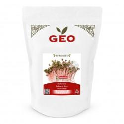 Photo Radis Rose - Graines à germer bio - 500g Geo