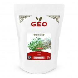 Photo Luzerne (Alfalfa) - Graines à germer bio - 500g Geo