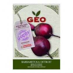 Photo Semences pour Betterave Detroit Bio 8g Geo