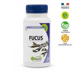 Photo Fucus 120 gél. MGD